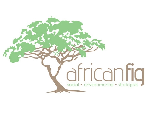 African Fig Logo Design
