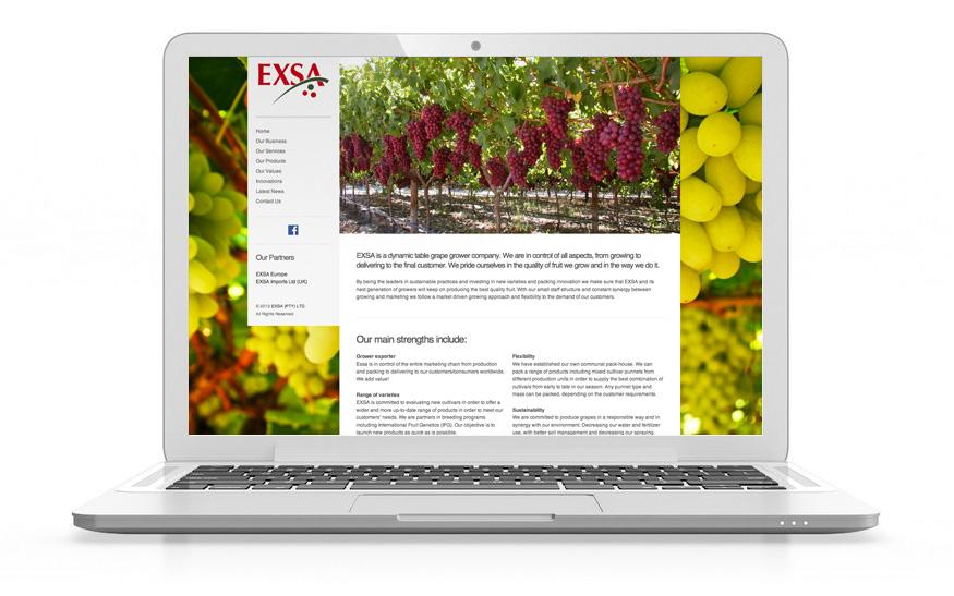 Nic Website Design